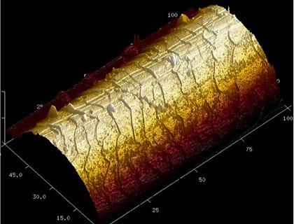Biological Analysis Tool atomic force microscopy AFM :3D representation of hair