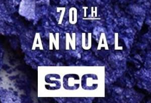 Karl Lintner Wellness at NYSCC 2015
