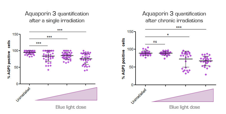 Aquaporin expression blue light