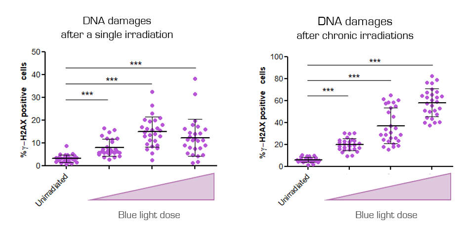Blue light DNA damage skin cells